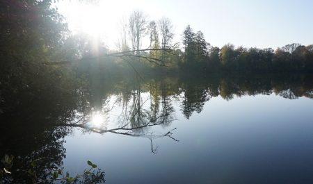 Herbst Bäume See Ruhige Gewässer Reflexion Sonne